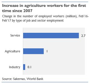 Graph - increase in agriculture workers 2