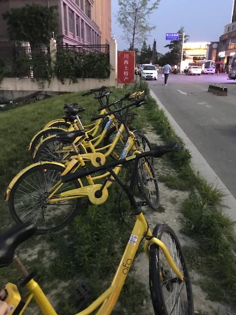 The yellow Ofo bikes spotted in Lhasa, Tibet.